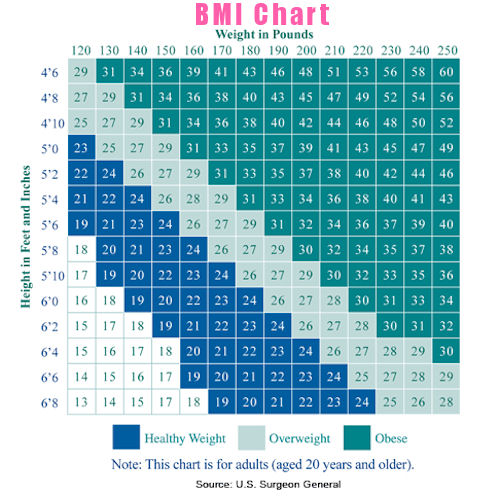 Women S Weight Chart  SaveBtsaCo